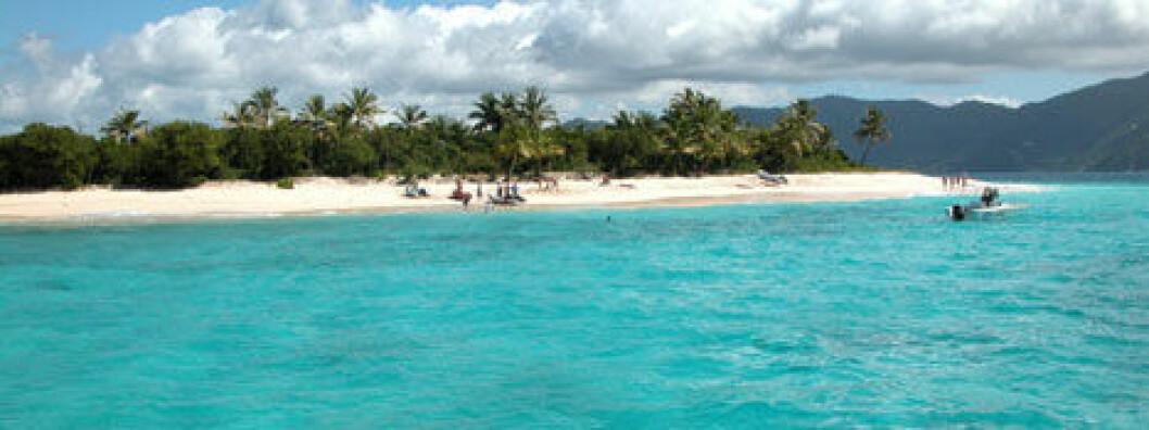 Dyrere å seile i BVI