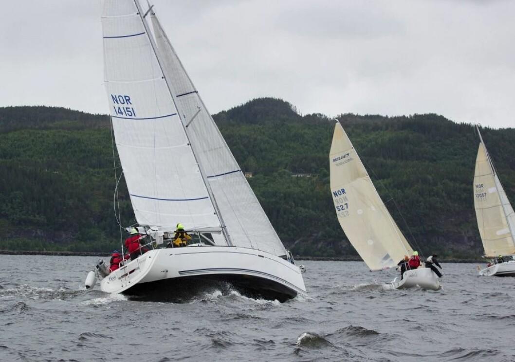 Malvik og Stjørdal arrangerer seileruke