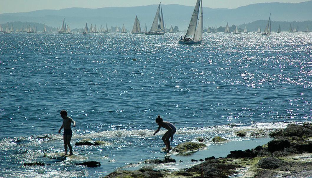 SEPTIK: I dag kan fritidsbåter tømme septiken 300 meter fra land. Dette foreslås nå å forbys helt, for å ivareta Oslofjorden.