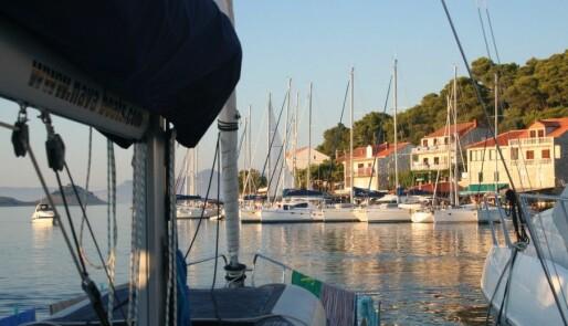 Skatter skremmer båtturistene