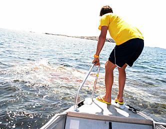Mange skjær i sjøen