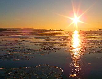 Vintervakkert ved Aker Brygge