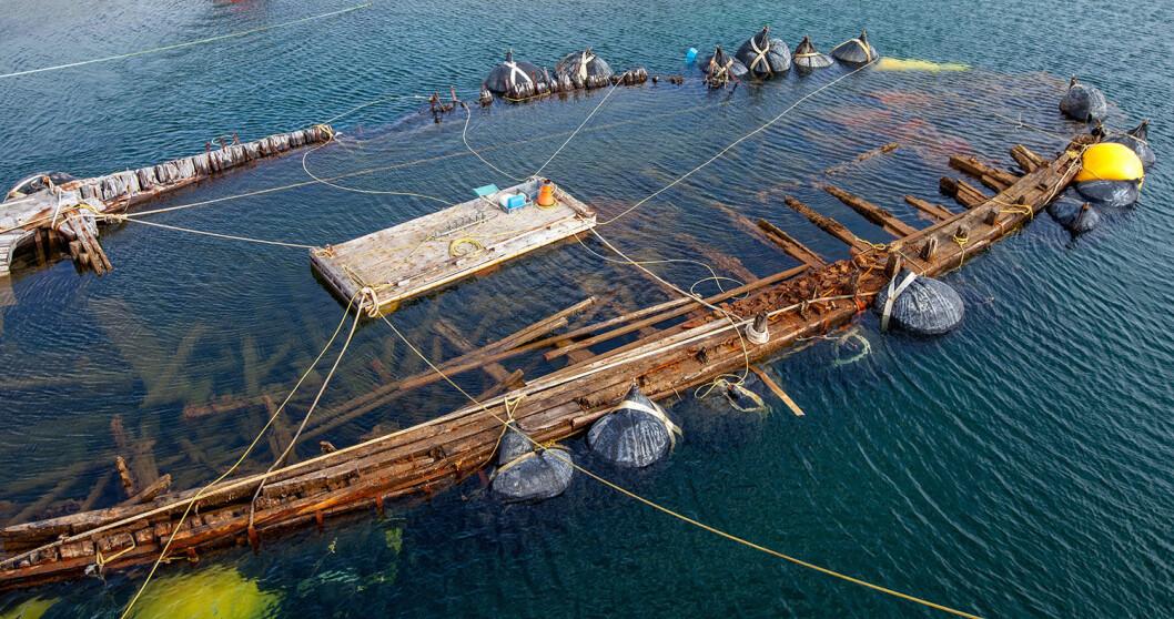 «MAUD» Flyter: Et stort øyeblikk. «Maud» har sluppet taket i bunnen og «flyter» og den ene siden av båten som har liggte under vann i over 80 år er kommet til overflaten.