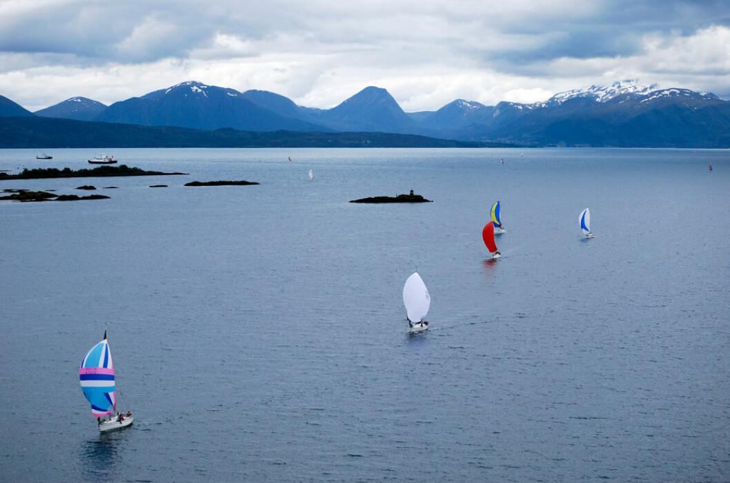 STIGENDE FORMKURVE: Regattamiljøet i Molde Seilforening er for oppadgående.