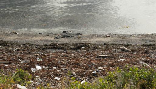 NSF med Hold Havet Rent-app