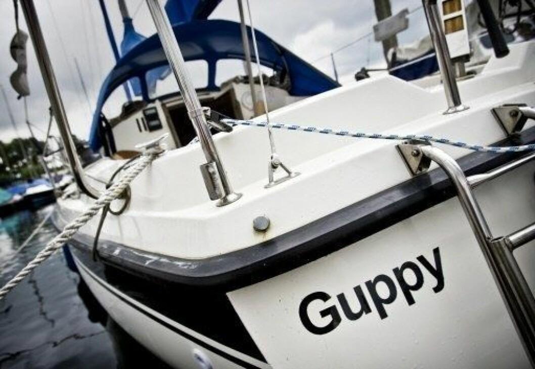 Laura Dekkers Hurley 800 «Guppy»