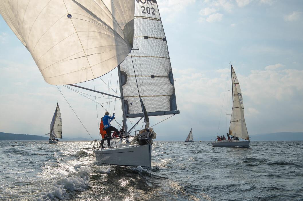 I FÅTALL: Blant storbåtseilerne på Nesodden er regattaseilerne i fåtall.
