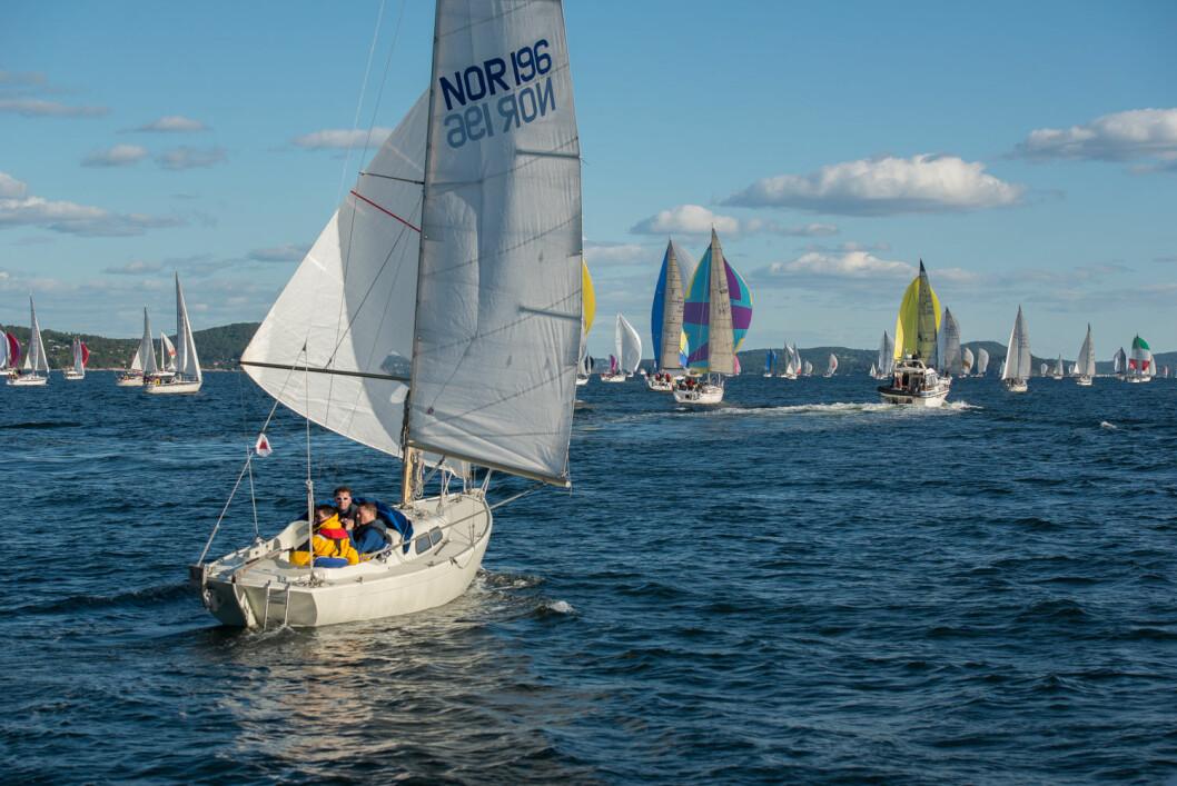 AVTALE: KNS og Norsk Maritimt Forlag AS har inngått en avtale som sikrer samtlige KNS-medlemmer full tilgang til SEILmagasinet og Seilas' digitale innhold.