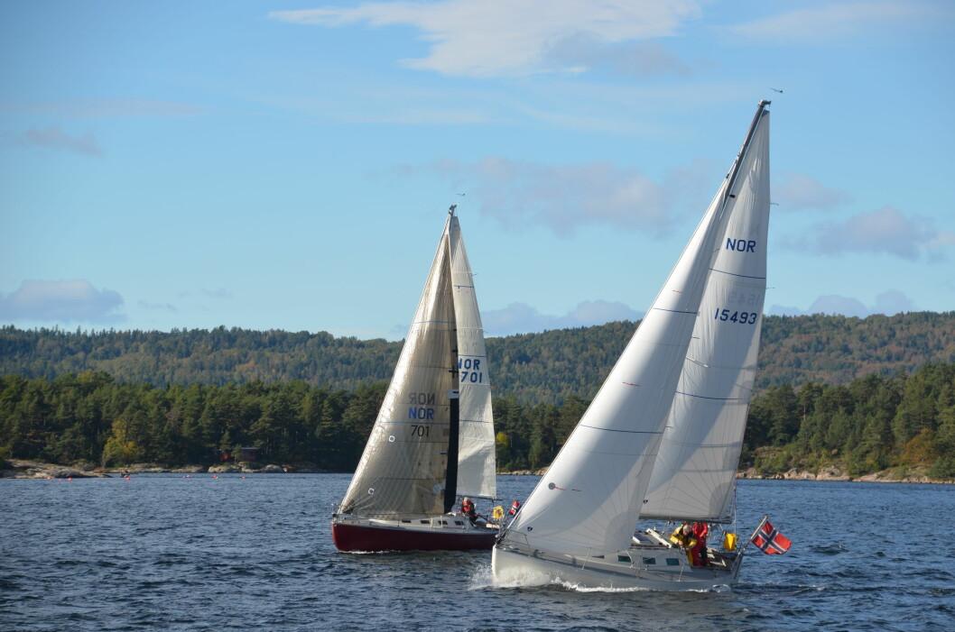 TO GRINDER: Svenning Torps «nye» hvite Grinde med høy rigg seiler sammen med en original Grinde med masthead-rigg.