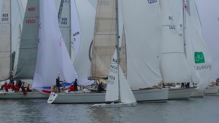 LITEN: Den 13-fots lange båten ble liten mellom alle 30 og 40-foterne.