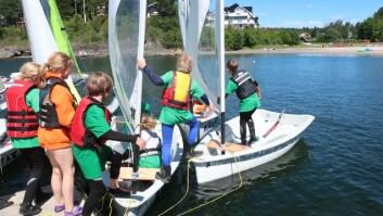 VIND: Windsurfing, seiling og bading, samt livredningskurs står på programmet på Nesøya.
