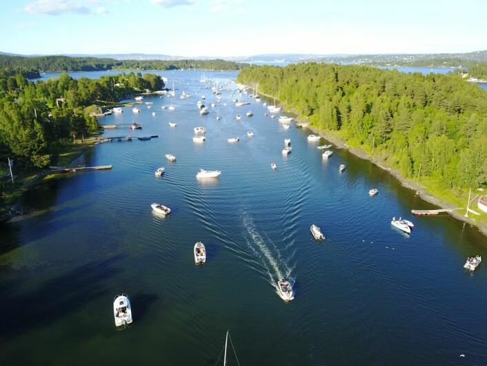 TETT: Flere båter i Middagsbukta midt i uka, enn det det var på St. Hans en fredag.