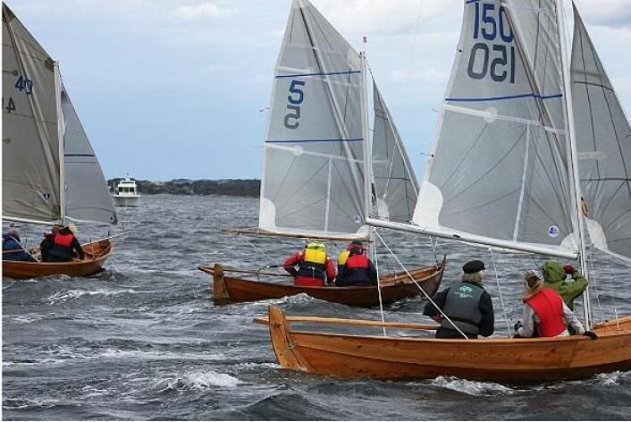 OSELVAR-NM: NM går i Oselvar med 8 kvm spriseil.