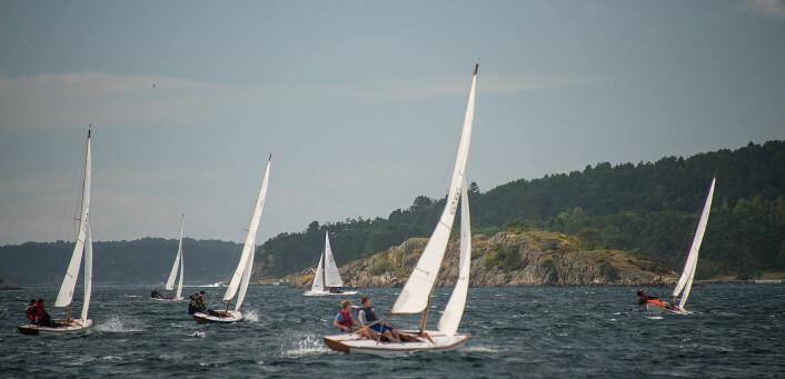 FRISKE FORHOLD: I andre og tredje seilas var forholdene på sitt friskeste i Grimstadjolle-NM.