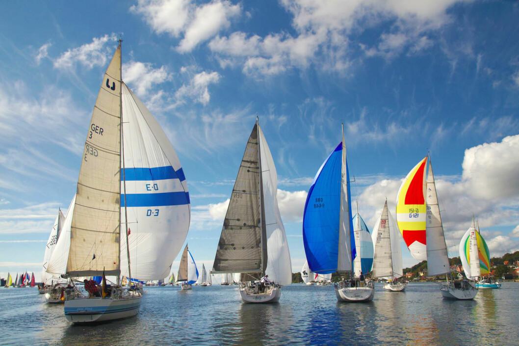 POPULÆRT: Silverrudder har venteliste på deltagere som ønsker å seile til høsten.