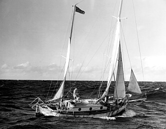 De gale mennenes regatta