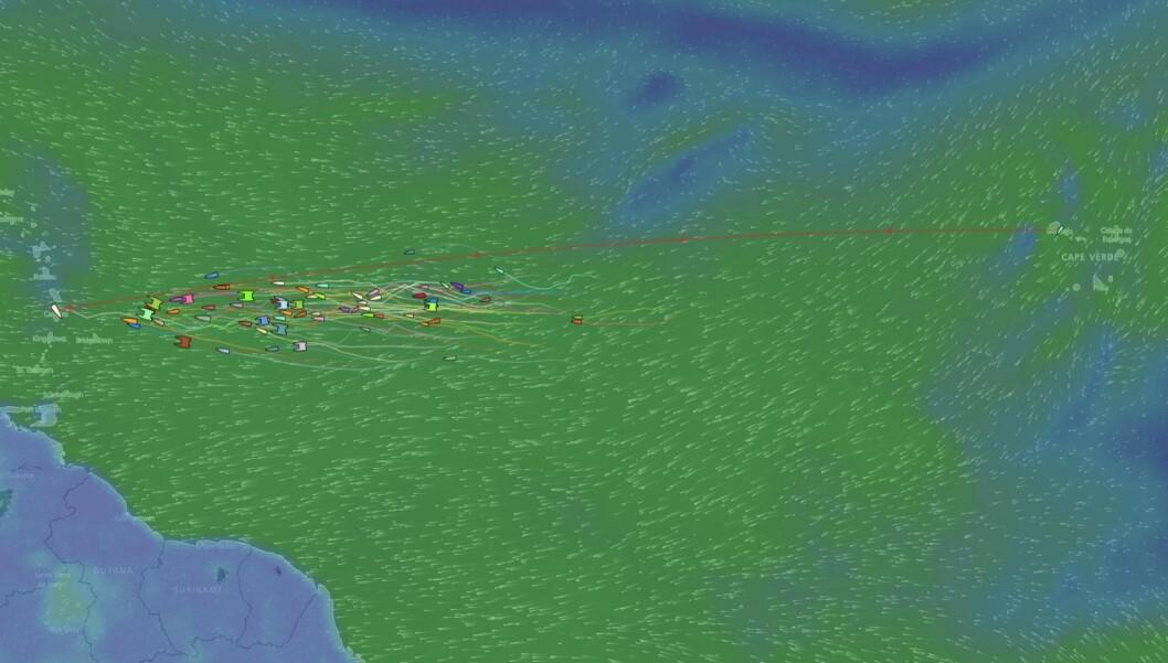 ARC+: Føsrte båt gikk i mål på søndag. Første norske båt går i mål på onsdag.