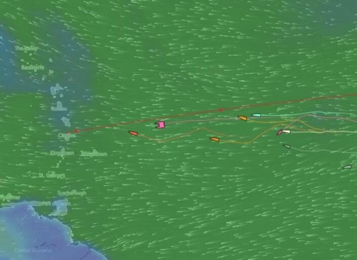 NORSKE: De 11 norske ARC+ båtene har nå kommet i mer stabil vind.