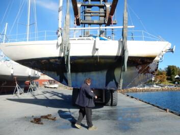 HØST: Etter to sesonger i sjøen ble IF-en løftet på land høsten 2016. På babord side ble vanlig Nonstop brukt forut og akter, mens Supreme ble brukt i midtfeltet.