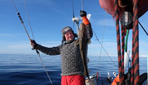 Et forsøk på å seile lofotfiske