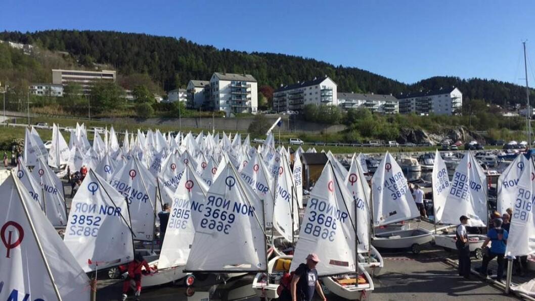 MANGE SEIL: Det var mange seil å se i Ålesund da årets andre norgescup i Optimist og Laser ble avviklet.