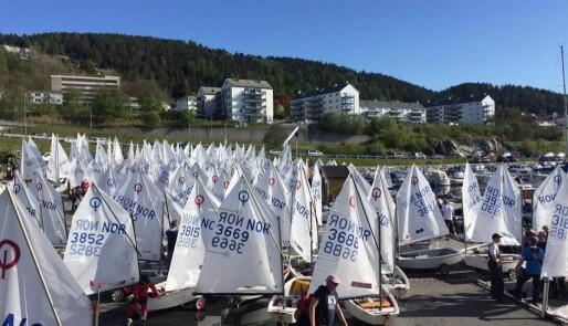 Mange seil i lett vind
