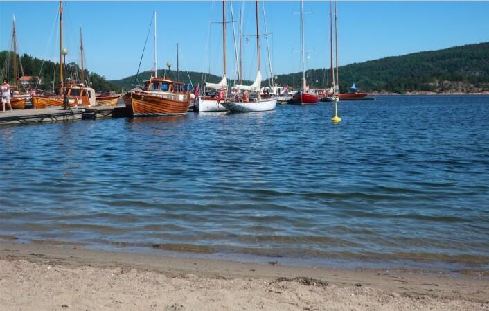 PLASS: Alt ligger til rette for e vellykket festival. Her er det plass til 85 trebåter.