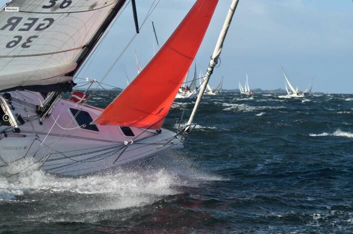 TØFT: Hard vind, mye strøm og lite med plass gjorde Silverrudder til en svært krevende regatta.
