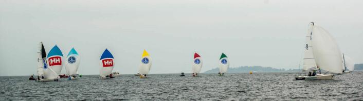 I TET: Pia Dahl Andersen og laget hennes (i hvit spinnaker) vant tre seilaser i suveren stil.