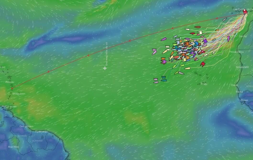 ARC: God bør for ARC-seilerne som holder god fart. De første båtene vil være halvveis etter bare seks døgn.