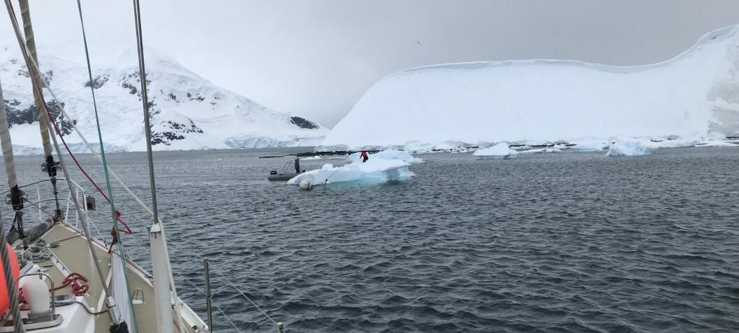 Til isbergene - og tilbake