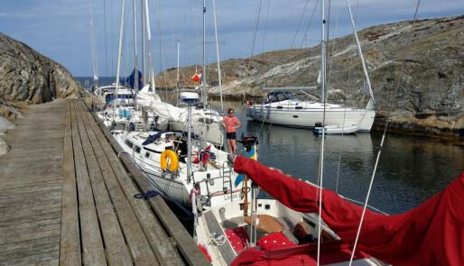 «Seil ut!» – tur og regatta