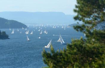 TETT: Færder\'n gir en unik opplevelse. Tett med seil i den trange fjorden er ett flott syn.