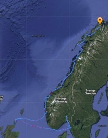 TRACKING: Mahina Tiare III seilte fra Orust til Orkenøyene, til Vestlandet og har fulgt kysten nordover. Ekspedisjonen startet i starten av mai.