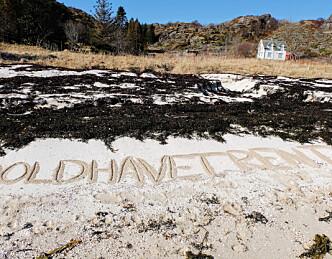 29. april starter en uke med strandrydding
