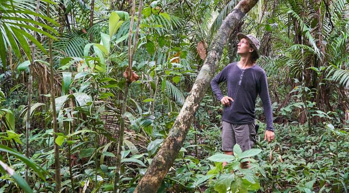 EVENTYRER: Martin Bull i jungelen i Brasil.