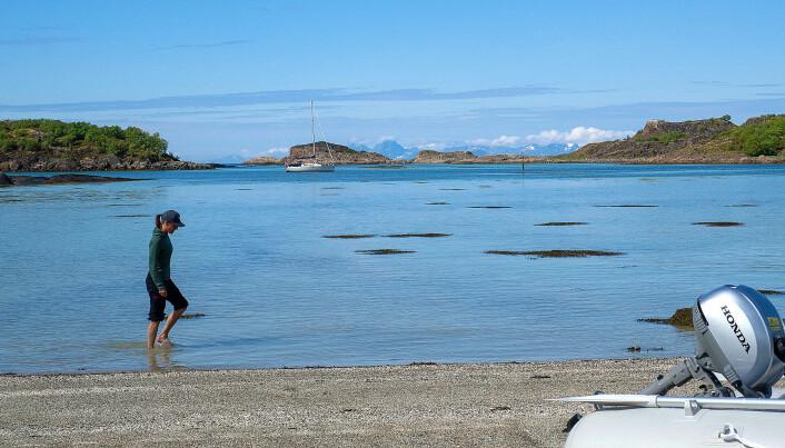 PÅ SVAI: Marianne vasser i Dalsvær med «Simetra» på svai.
