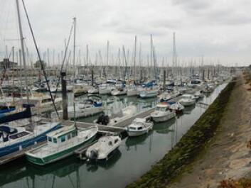 STORT: 4500 er det plass til i Port des Minimes.