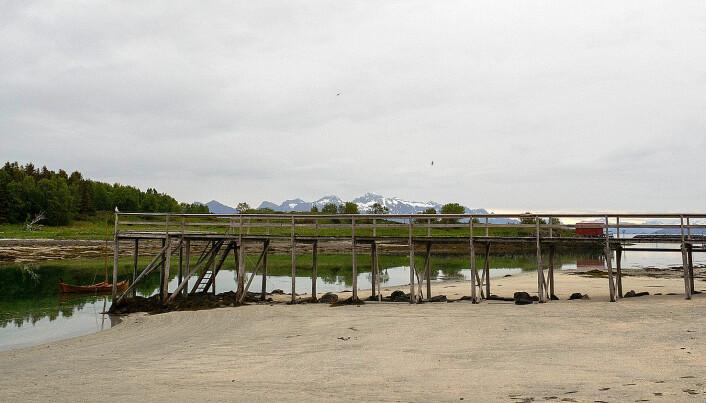 STRAND: Kjerringøy med Lofoten i bakgrunnen.