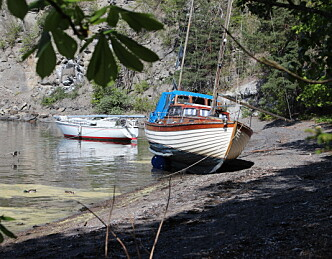 Båtvrak koster kommuner millioner