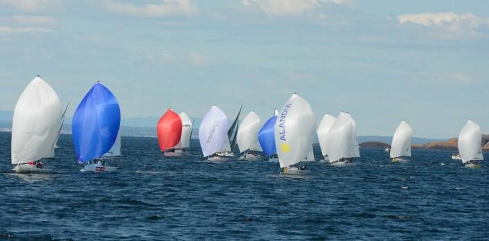 HANKØ: J/70 er den største klassen under Grundig Hankø Race Week.