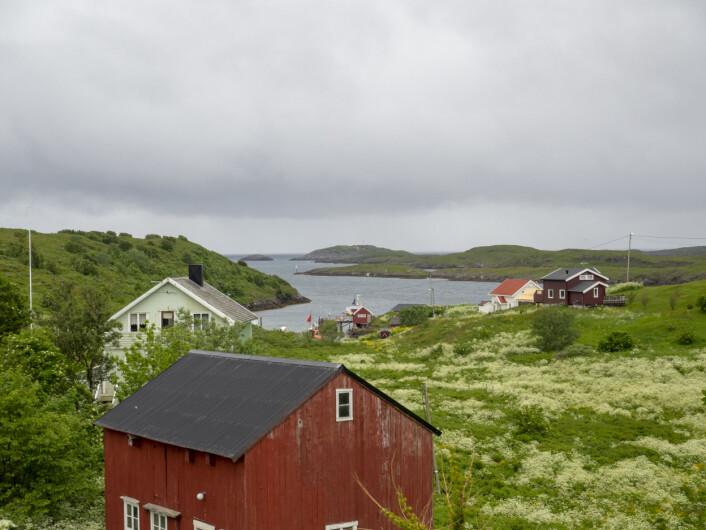 FISKEVÆR: Helligvær ligger i Bodø kommune og ligger 16 nm ut i Vestfjorden.