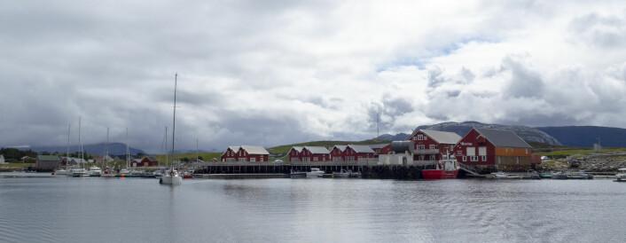 TRØNDELAG: Sætervik gjestehavn