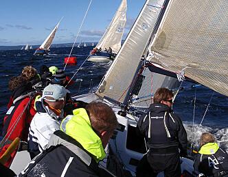 Frisk Hollenderseilas med mange båter