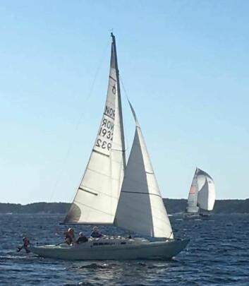RENESANSE: 12 Knarr Variant deltok i MK Båt Cup i helgen.