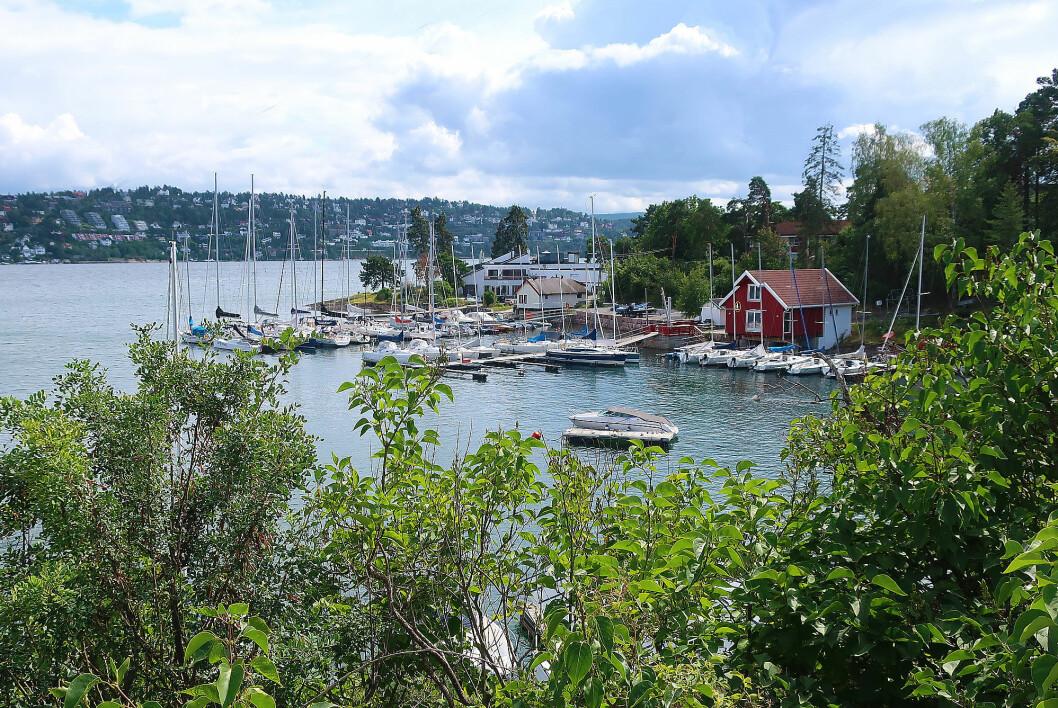 MALMØYA: For å få bryggeplass ved foreningen, kreves det aktiv deltagelse på regattabanen.