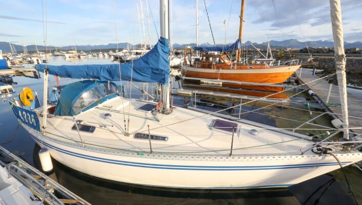 TILSALGS: Nå kan du gjør et båtkupp. Denne Comfortina 32,  som er gitt i gave til Molde Seilforening, er for salg.