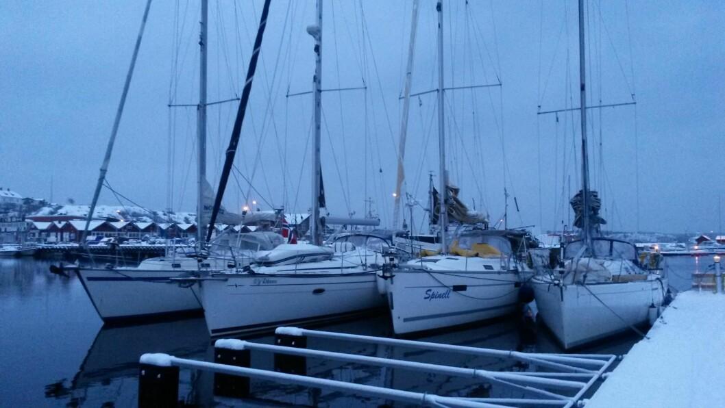 VINTER: Hele 15 båter deltar i årets regatta.