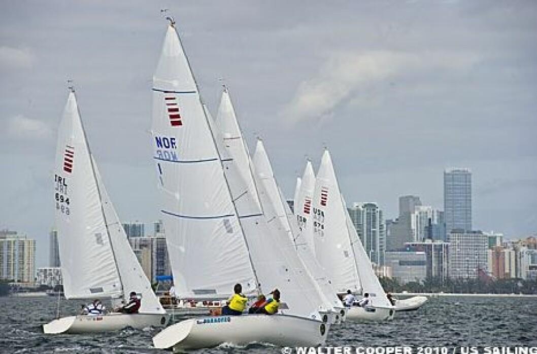 Sonargull i Miami