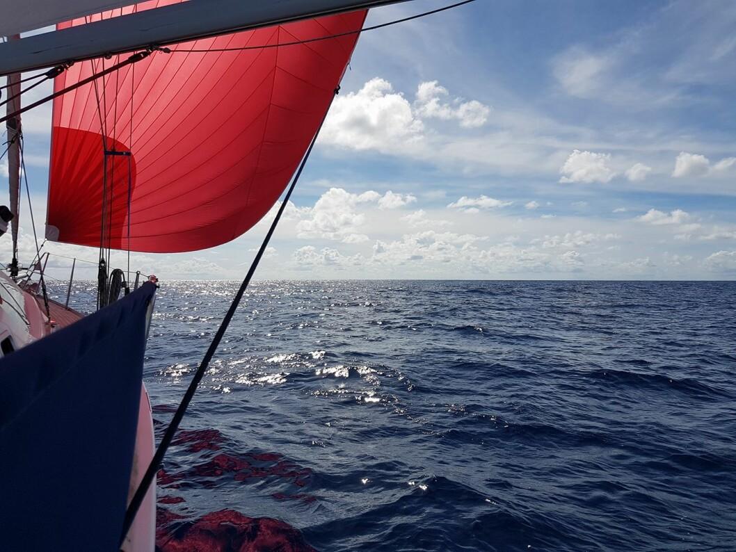 KOS: «Go Beyond» opplevde en flott seilas fra Las Palmas til Kapp Verde.